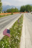 Construction of Pioneer Drive upgrade pauses for Memorial Day with American flags in median, next to Chugach Foothills Park in East Anchorage, Alaska. The park will have have irises and much more (and safer) parking when the project is complete.